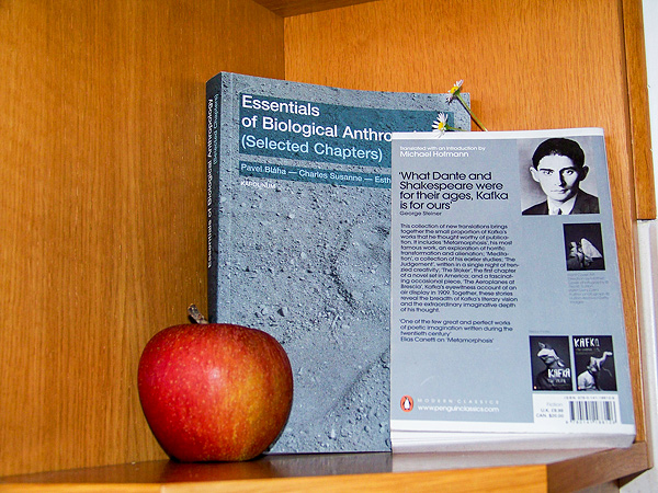 Shelfie with Kafka and Apple